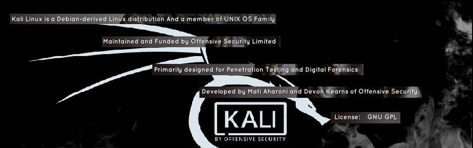 kali linux in hindi